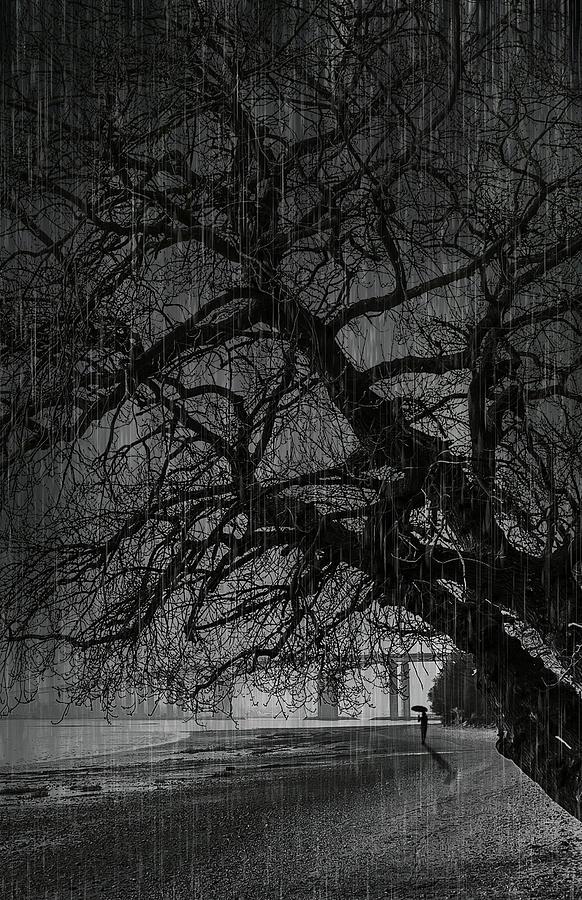 Heavy Rain Digital Art