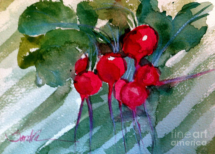 Heirloom Radishes Painting  - Heirloom Radishes Fine Art Print