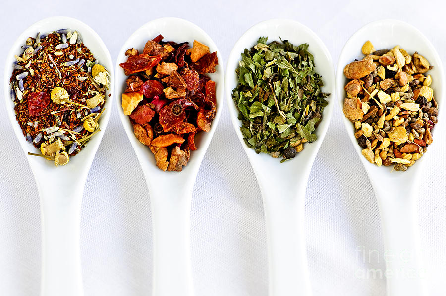 Herbal Teas Photograph