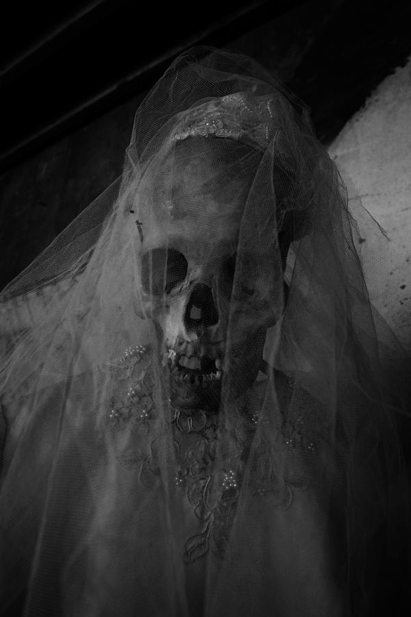 Skull Photograph - Herbies Dead Wife Lilith In New Orleans by Louis Maistros