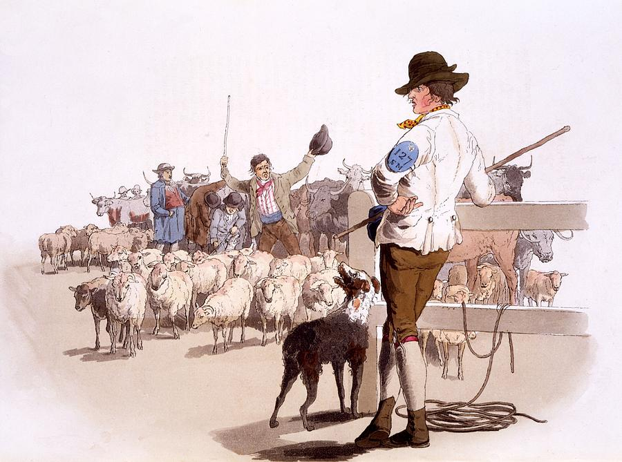 Herdsmen Painting - Herdsmen Of Sheep And Cattle, From The by William Henry Pyne