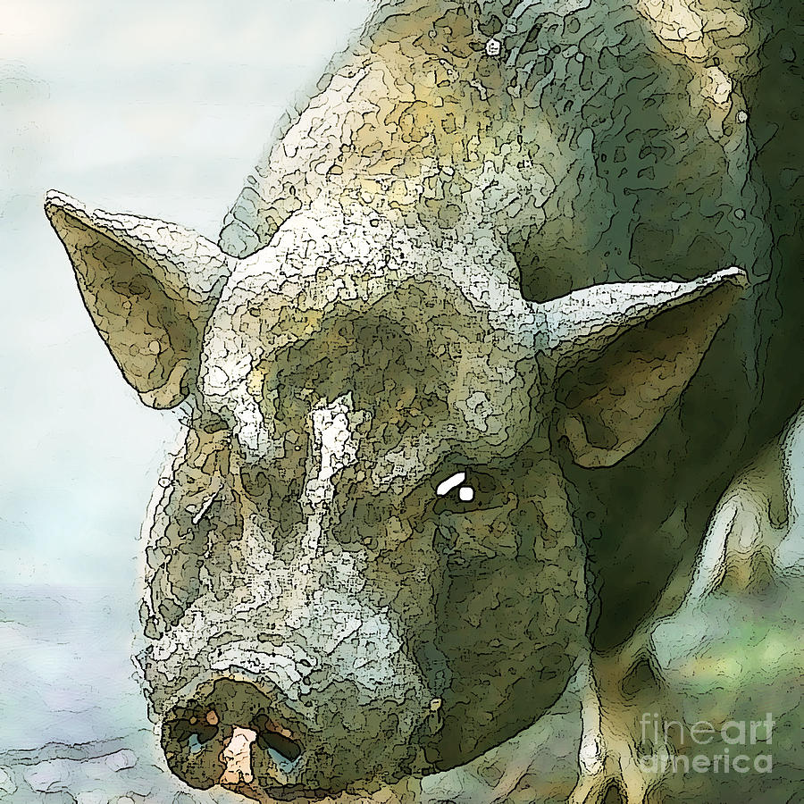 Pig Photograph - Heres Woody by Artist and Photographer Laura Wrede