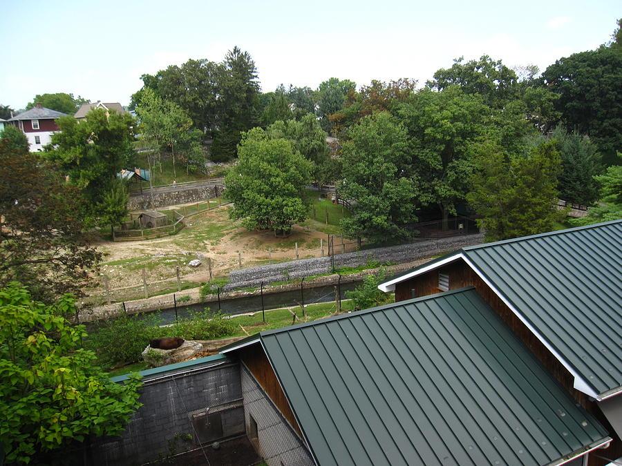 Hershey Park - 12126 Photograph
