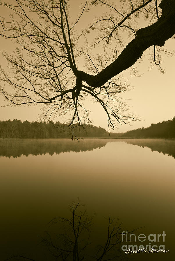 Hewitt Pond No. 2 - Vertical Photograph  - Hewitt Pond No. 2 - Vertical Fine Art Print