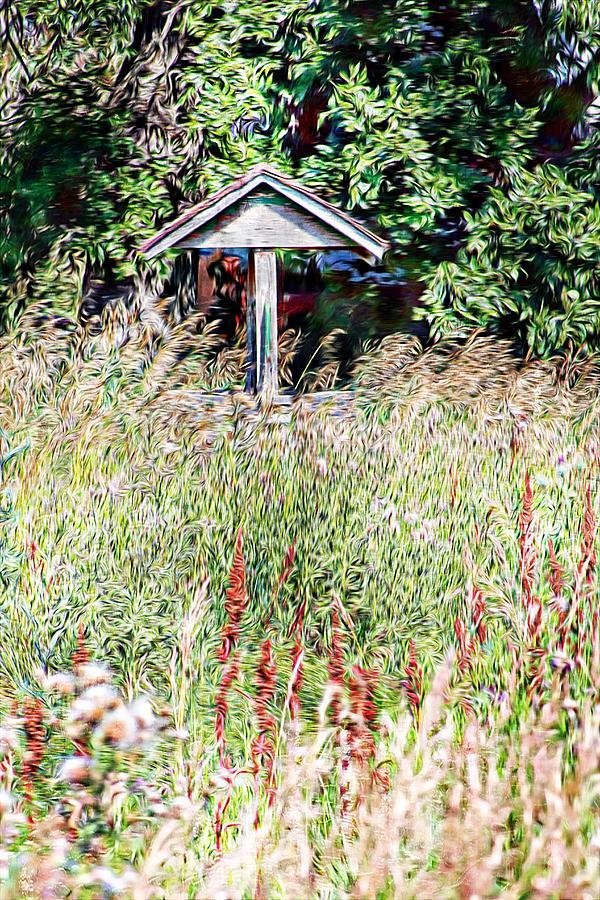 Hidden Wishing Well Photograph
