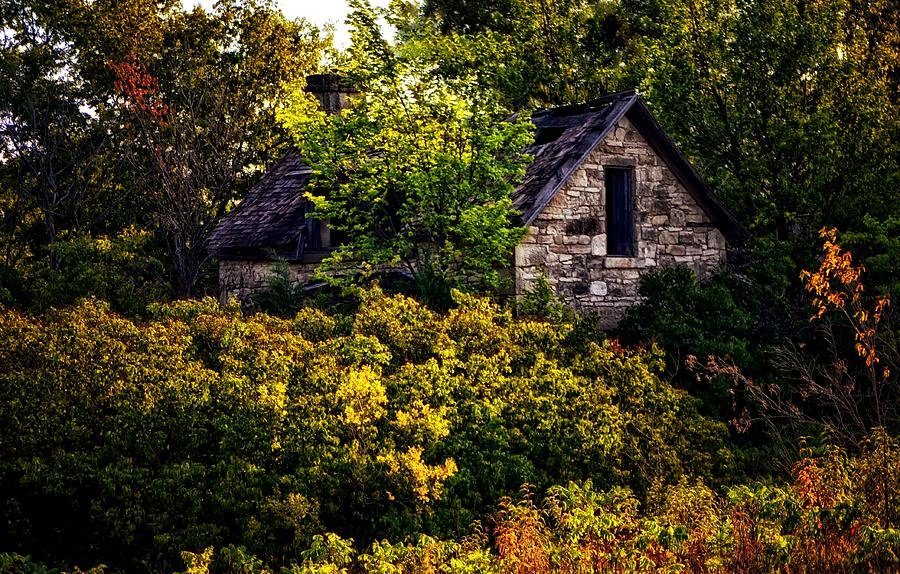 Nature Photograph - Hideaway by Tricia Marchlik
