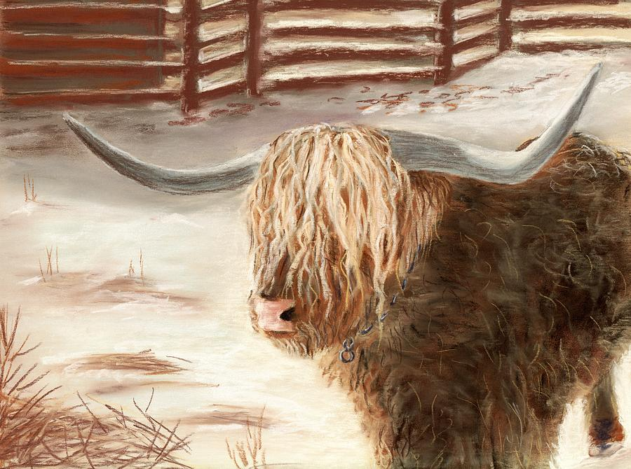 Highland Bull Painting