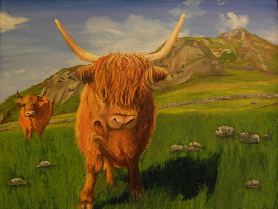 Highlands Painting - Highland Coos by Kelly Bossidy