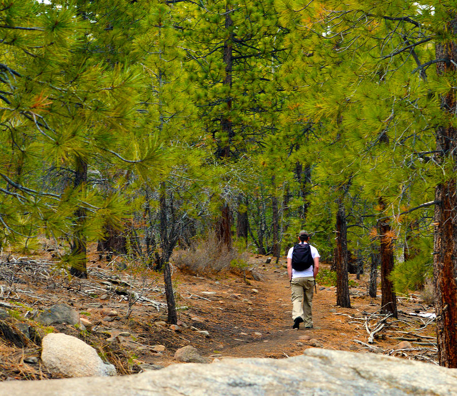 Hike On 2 Photograph  - Hike On 2 Fine Art Print
