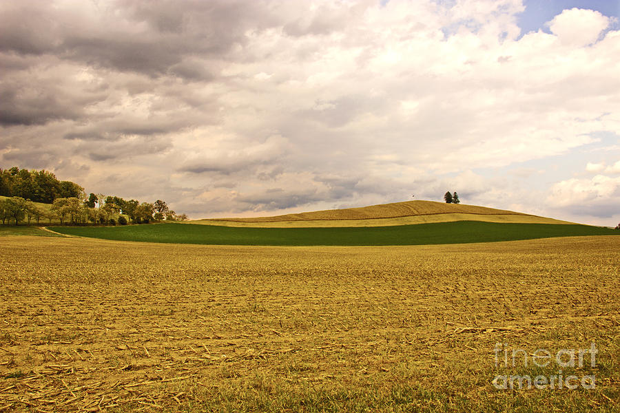 Hill Side Photograph  - Hill Side Fine Art Print
