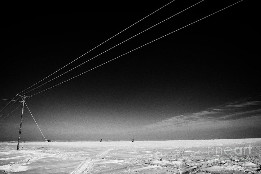 Hoar Frost Covered Electricity Transmission Lines Snow Covered Prairie Agricultural Farming Land Wit Photograph