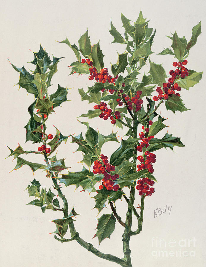 Holly Painting