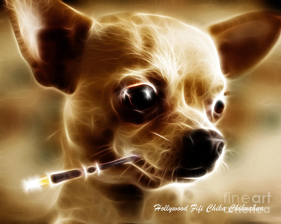 Hollywood Fifi Chika Chihuahua - Electric Art - With Text Photograph  - Hollywood Fifi Chika Chihuahua - Electric Art - With Text Fine Art Print