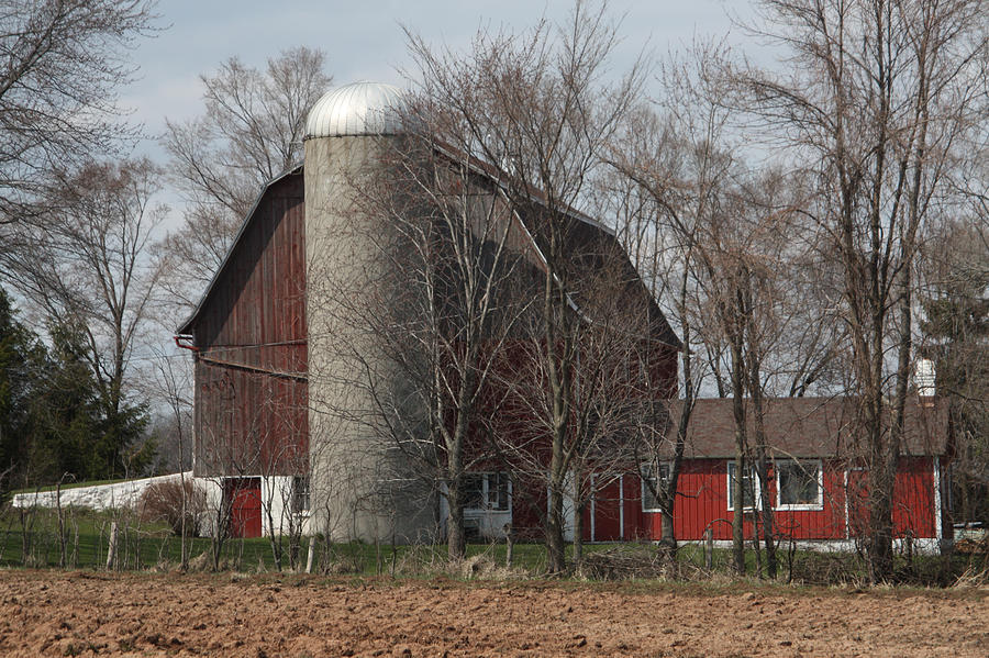 Homestead Farm Photograph  - Homestead Farm Fine Art Print