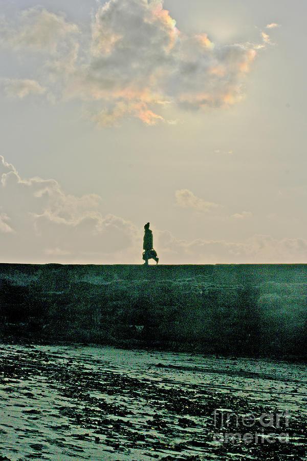 Fine Art Photograph - Homeward Bound by Terri Waters