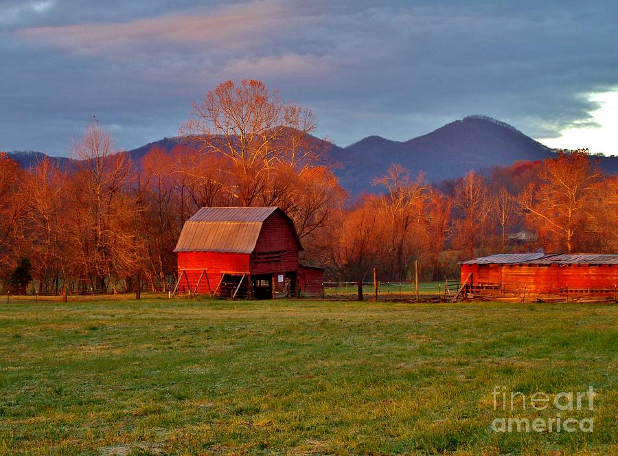 Hominy Valley Mornin Photograph  - Hominy Valley Mornin Fine Art Print