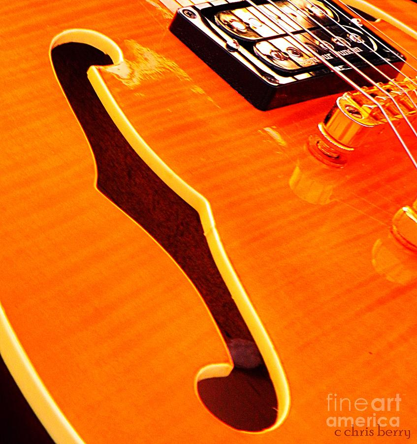 Honey Of A Guitar Photograph  - Honey Of A Guitar Fine Art Print