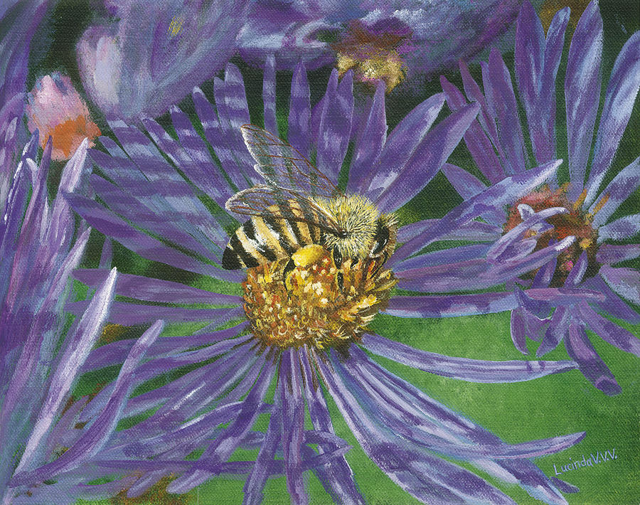 Honeybee On Purple Aster Painting  - Honeybee On Purple Aster Fine Art Print