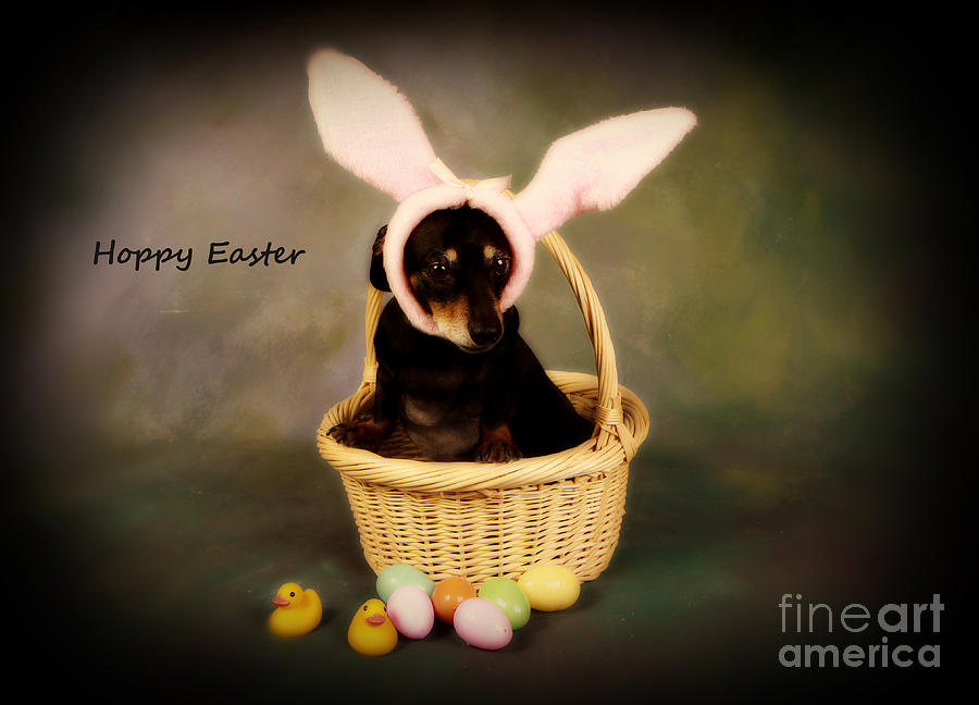 Hoppy Easter Photograph  - Hoppy Easter Fine Art Print