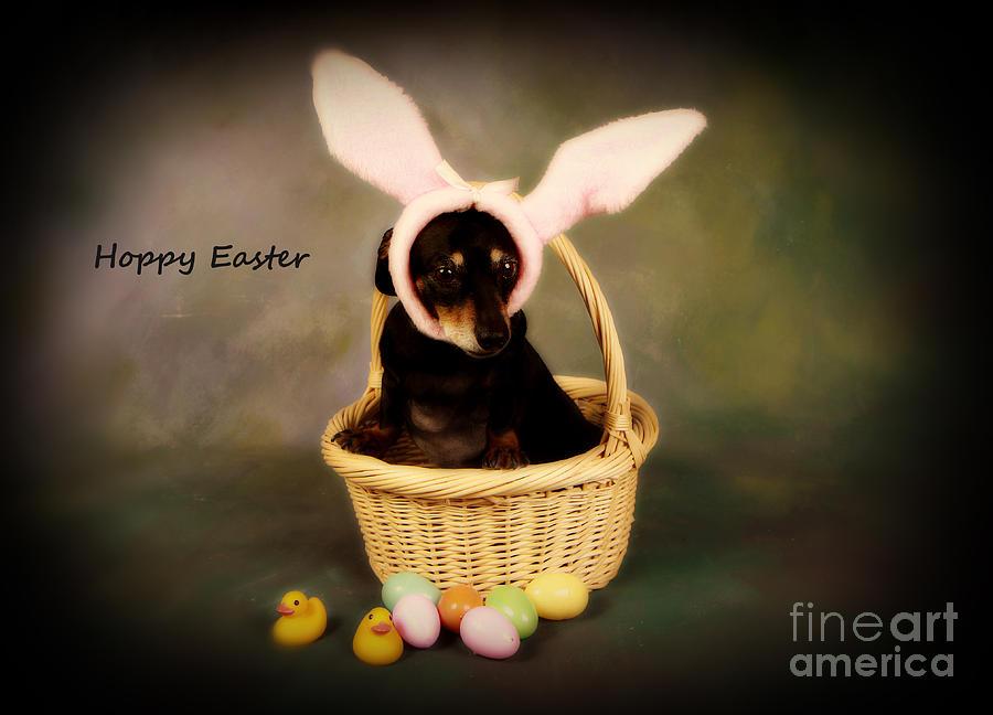 Hoppy Easter Photograph
