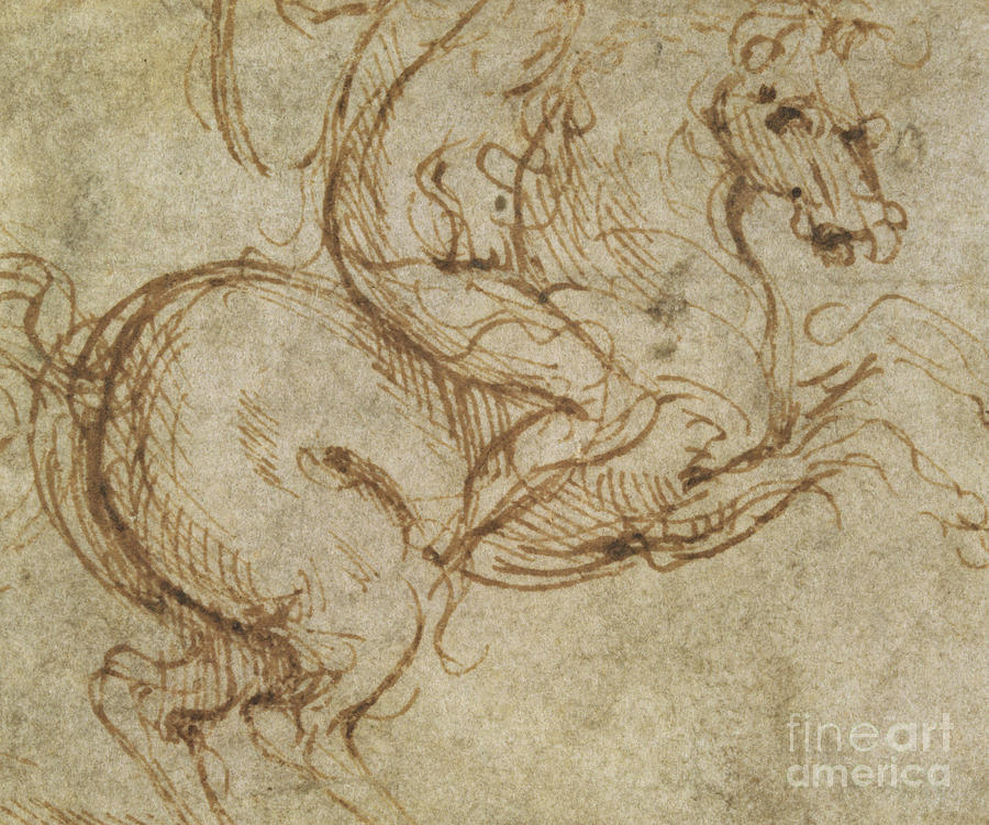 Horse And Cavalier Drawing