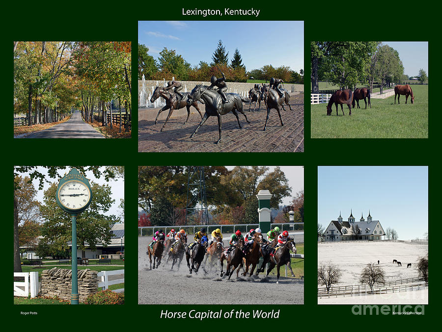 Horse Capital Of The World Photograph
