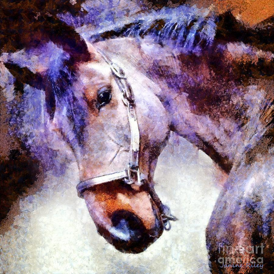 Horse Digital Art - Horse I Will Follow You by Janine Riley