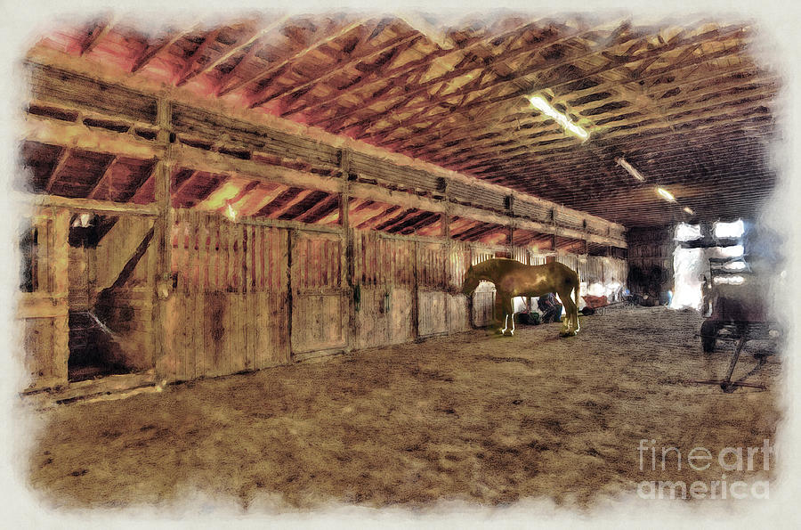 Horse In Barn Photograph