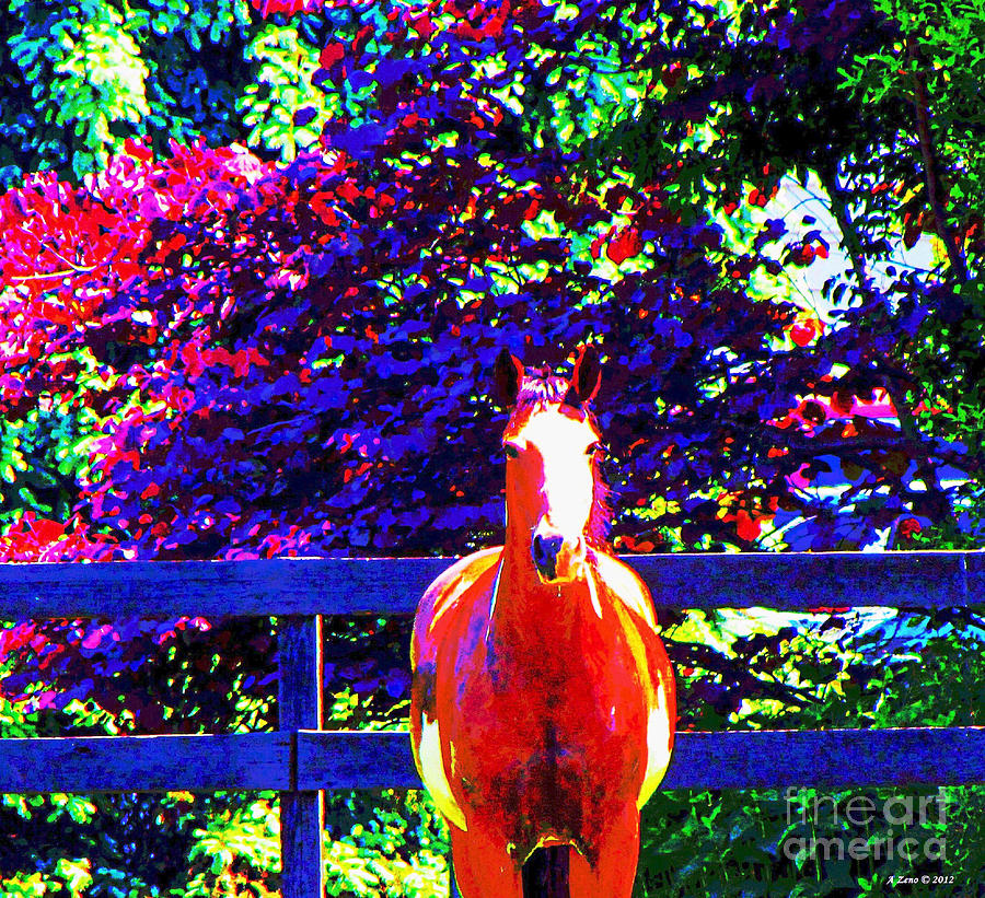 Horse On The Farm Photograph  - Horse On The Farm Fine Art Print