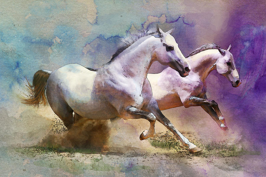 Horse Painting - Horse Paintings 004 by Catf