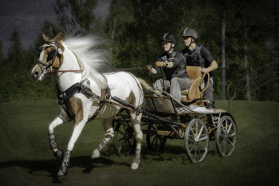 Horsepower Part I Photograph  - Horsepower Part I Fine Art Print
