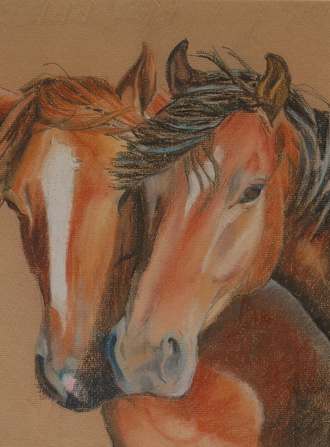 Horses Looking At You Pastel  - Horses Looking At You Fine Art Print