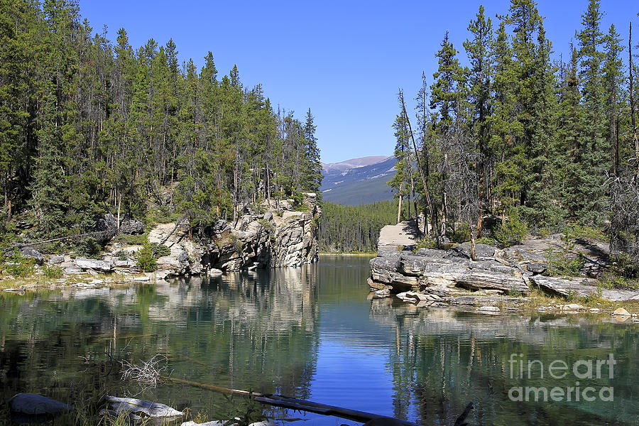 Horseshoe Lake Jasper National Park Photograph By Teresa Zieba