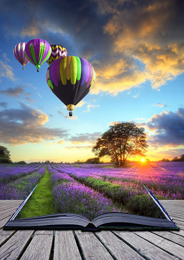 Hot Air Balloons And Lavender Book Photograph