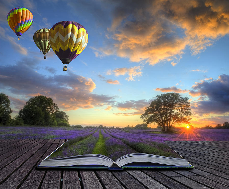 Hot Air Balloons Lavender Landscape Magic Book Pages Photograph