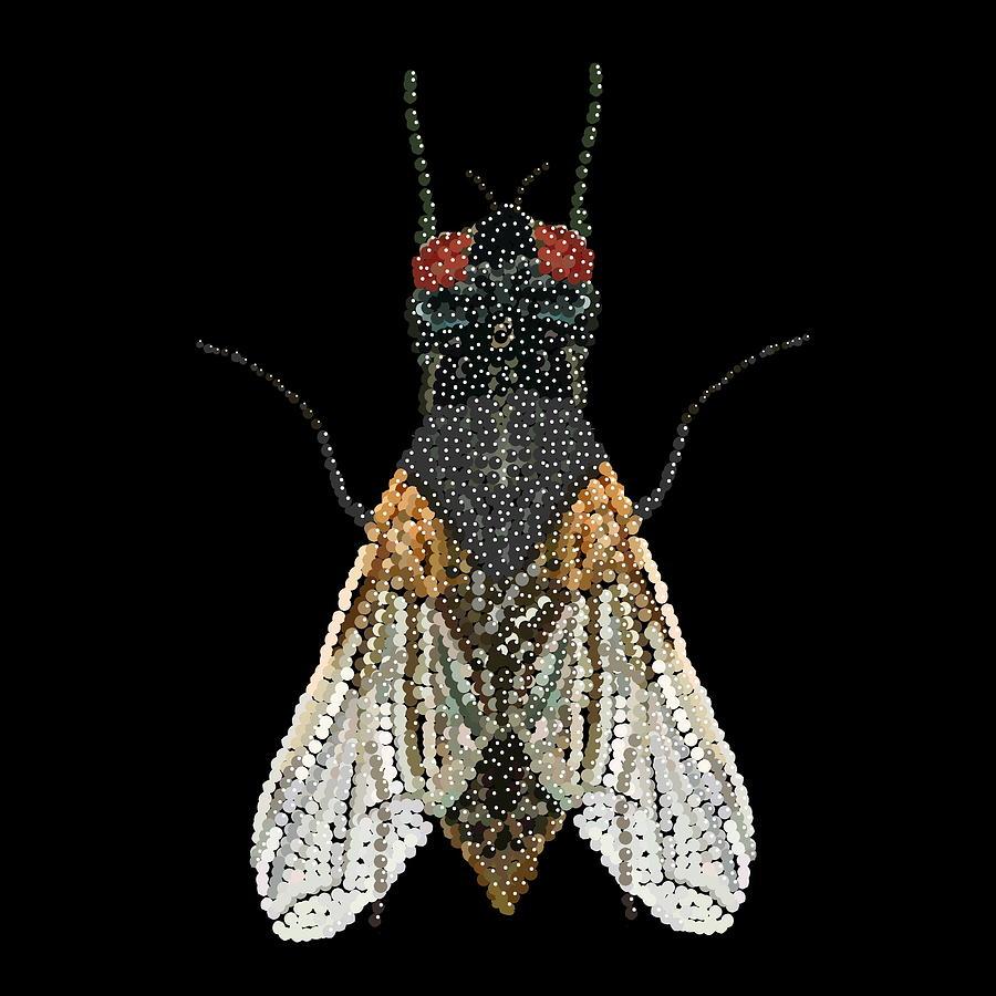 Digital Art - House Fly Bedazzled by R  Allen Swezey