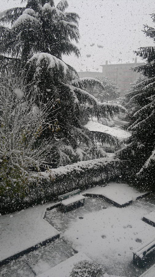 Huge Snowflakes. Winter Photograph - Huge Snowflakes by Giuseppe Epifani