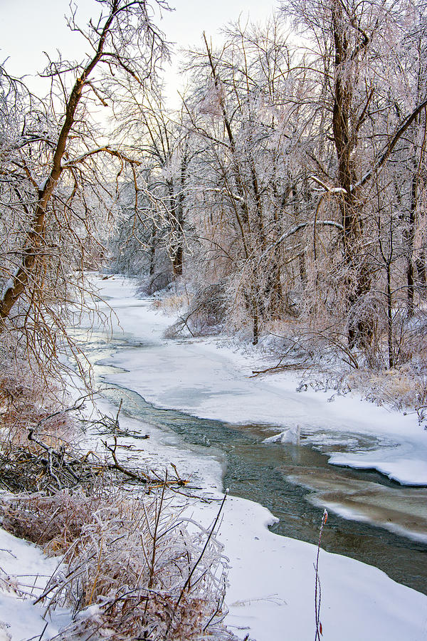 Humber River Winter Photograph