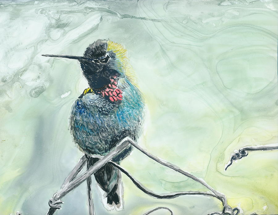 Bird Painting - Humming Bird by Donna Turbyfill