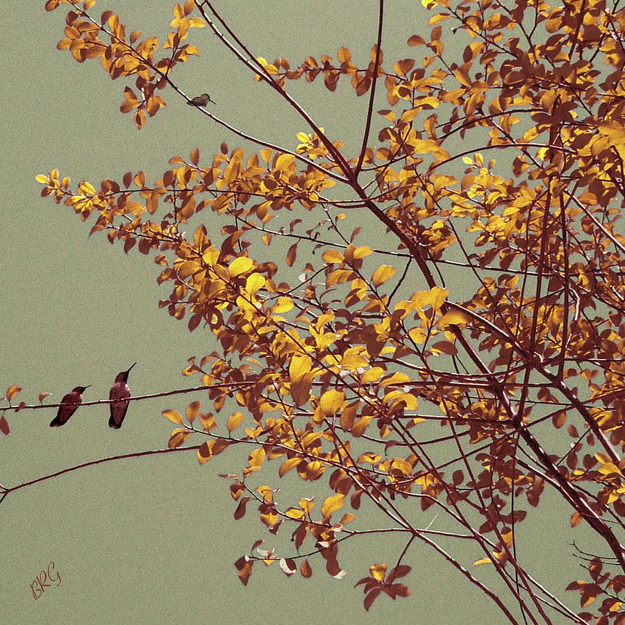 Hummingbirds On Yellow Tree Photograph