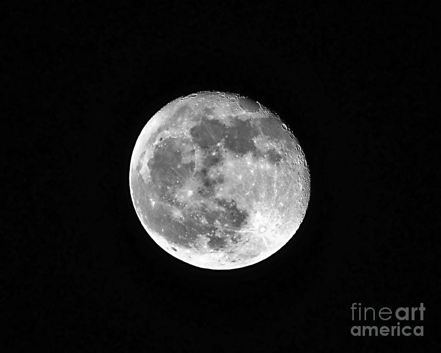 Moon Photograph - Hunters Moon by Al Powell Photography USA