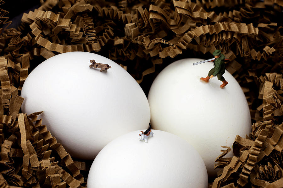 Hunting In Nest Little People On Food Photograph