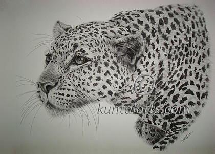 Hunting Leopard Mixed Media