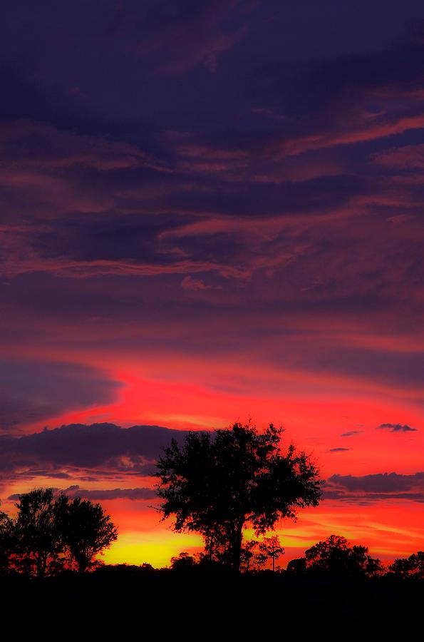 Huricane Sunset Pyrography