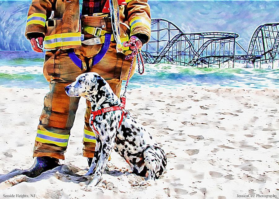 Hurricane Sandy Fireman And Dog Photograph