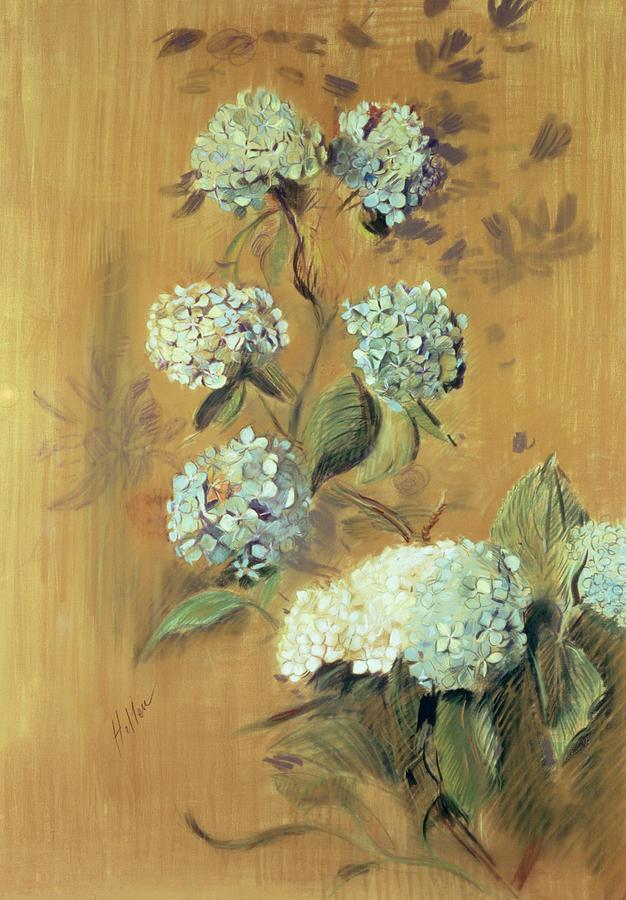 Bloom Painting - Hydrangeas by Paul Cesar Helleu
