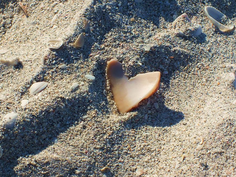 Seashell Photograph - I Heart The Beach by Anna Villarreal Garbis