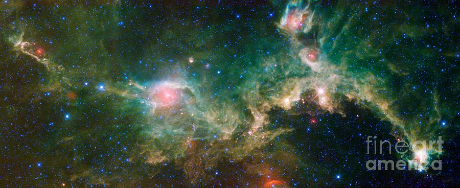 Ic 2177-seagull Nebula Photograph