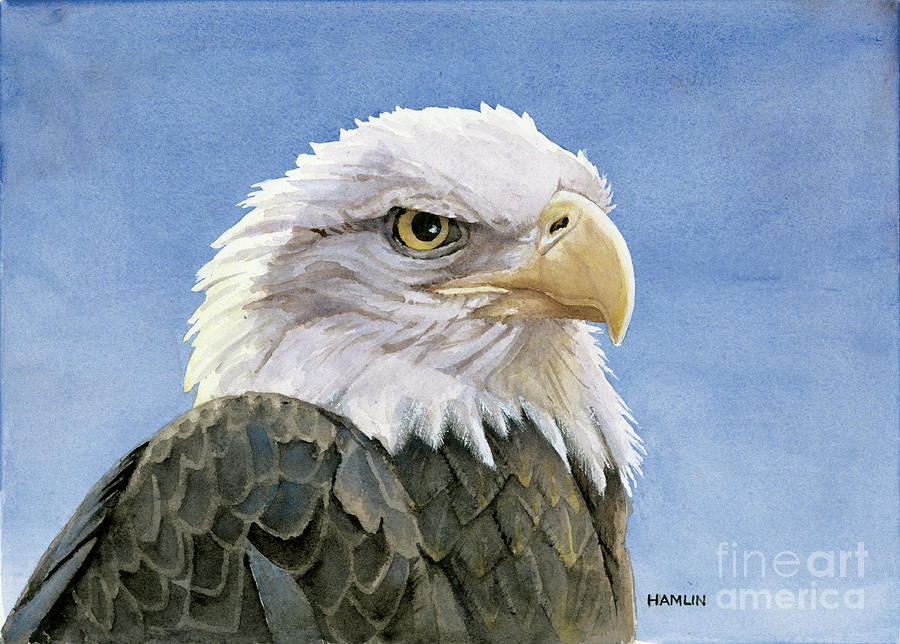 Bird Painting - Icon by Steve Hamlin