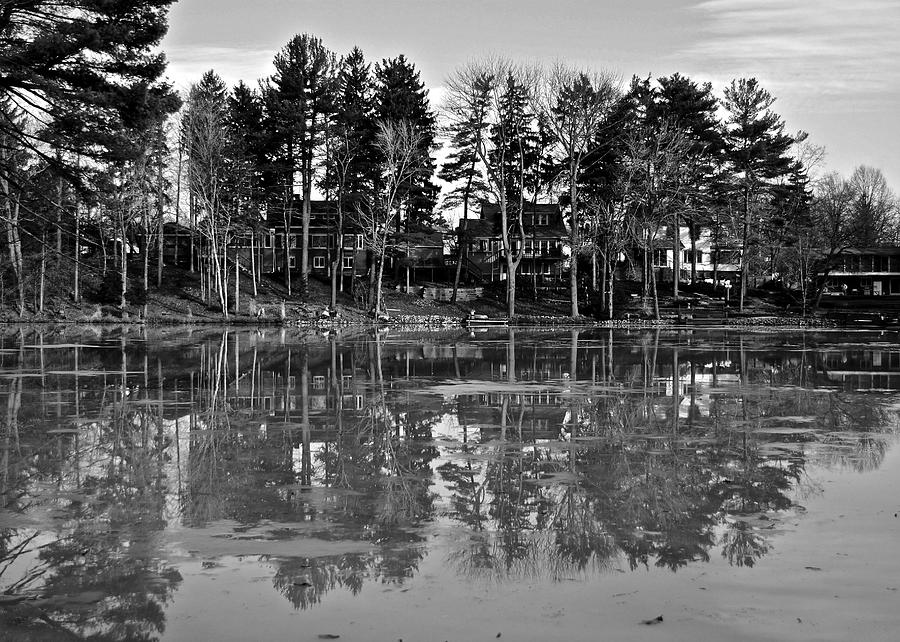 Icy Pond Reflects Photograph